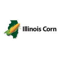 Illinois Corn