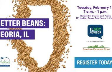 Better Bean Series – Series Partnership