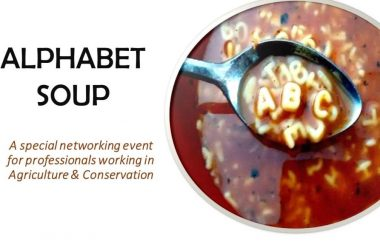 Alphabet Soup is Happening Soon!