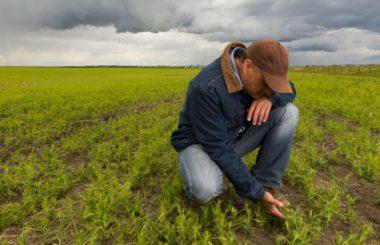 Quantifying Economic and Environmental Benefits of Soil Health – American Farmland Trust