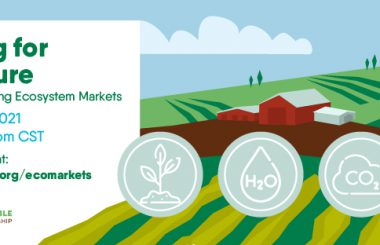 Illinois Sustainable Agriculture Partnership to host a free online national webinar exploring ecosystem markets
